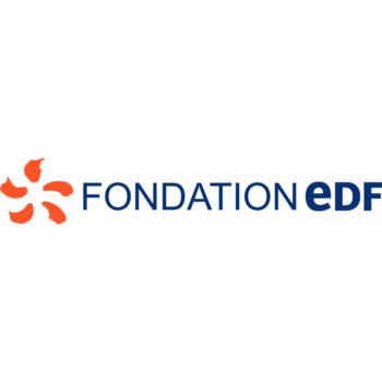 Logo Fondation EDF électricité stage